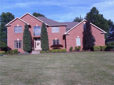 Canfield Single Family Home For Sale: 1705 Gully Top Ln
