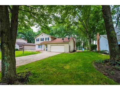 Boardman Single Family Home For Sale: 7562 Jaguar Dr