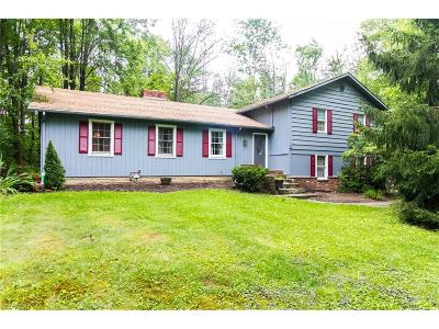 Chagrin Falls Single Family Home For Sale: 8701 Apple Hill Rd