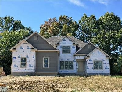 Canfield Single Family Home For Sale: 6714 Langston Run