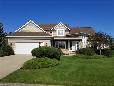 Solon Single Family Home For Sale: 7239 Annadale Dr