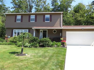 Mentor Single Family Home For Sale: 8367 Stirrup Ct