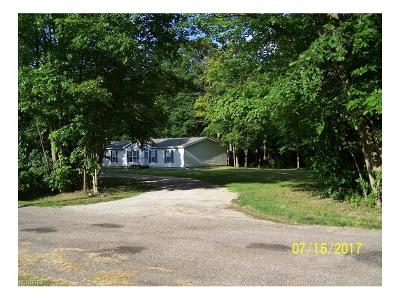 Single Family Home For Sale: 9575 Martin Rd