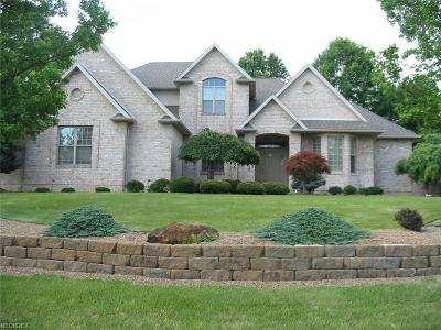 Canfield Single Family Home For Sale: 3955 Montereale Dr.