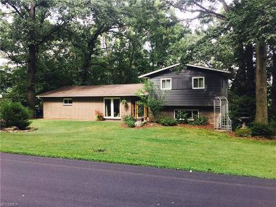 Licking County Single Family Home For Sale: 143 Margery Dr