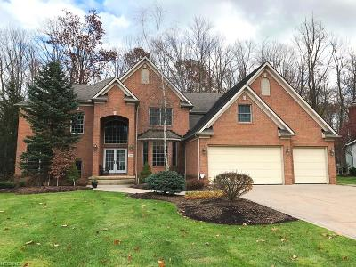 Solon Single Family Home For Sale: 7365 Joseph Dr