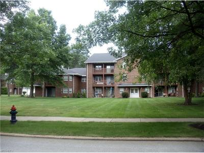 Broadview Heights Condo/Townhouse For Sale: 1150 Tollis #322