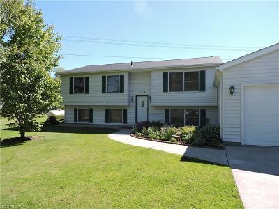 Ravenna Single Family Home For Sale: 8588 Price Rd