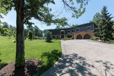 Kirtland Single Family Home For Sale: 10785 Rockwood Dr