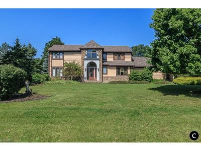 Willoughby Hills Single Family Home For Sale: 2882 Istra Ln