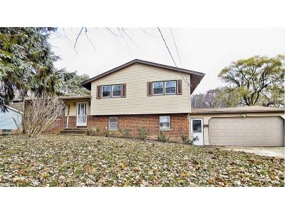 Solon OH Single Family Home For Sale: $240,000