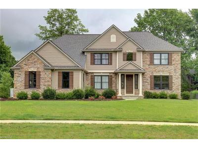 Westlake Single Family Home For Sale: 2887 Waterfall Way