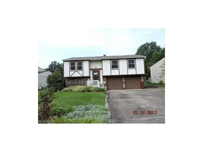 Niles OH Single Family Home For Sale: $69,900