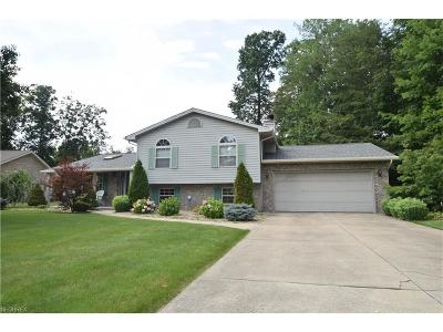 Canfield Single Family Home For Sale: 7065 Berry Blossom Dr