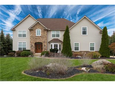 Avon Lake Single Family Home For Sale: 462 Cedarwood Rd