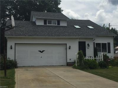 Painesville Single Family Home For Sale: 726 Ericston Ct