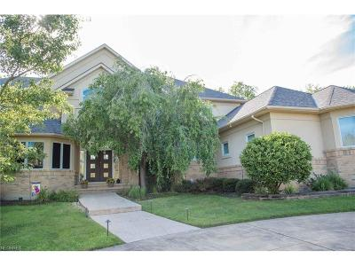 Solon Single Family Home For Sale: 7260 Royal Portrush Dr