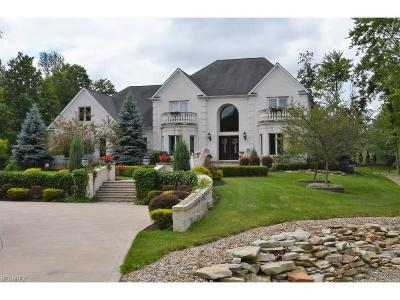 Hinckley Single Family Home For Sale: 2400 Country Brook Dr