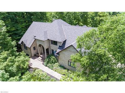 Summit County Single Family Home For Sale: 3921 Deer Run Oval