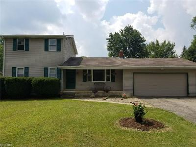 Youngstown Single Family Home For Sale: 4095 Kirk Rd