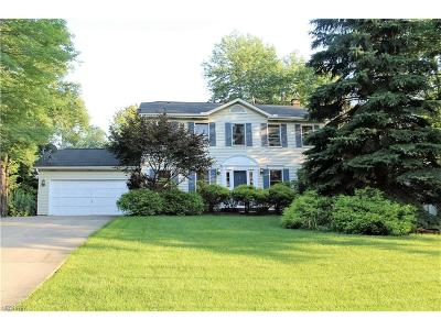Solon Single Family Home For Sale: 34538 Claythorne Rd