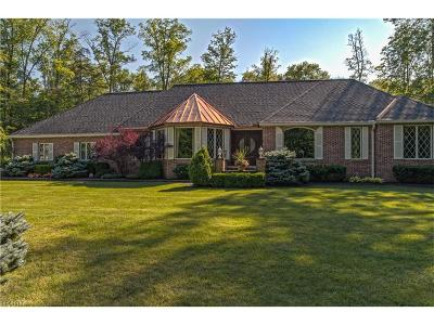 Geauga County Single Family Home For Sale: 10885 Scranton Woods Trl