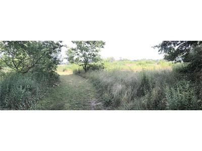Residential Lots & Land For Sale: Bridgeview