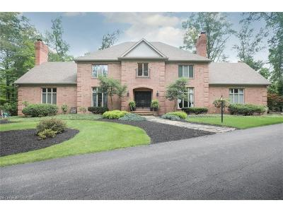 Canfield Single Family Home For Sale: 4085 Shields Rd