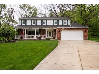 Mentor Single Family Home For Sale: 8363 Stirrup Ct