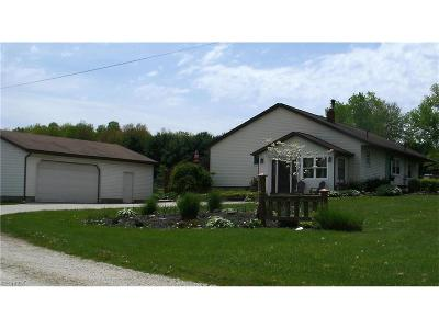 Summit County Single Family Home For Sale: 3494 Stimson Rd