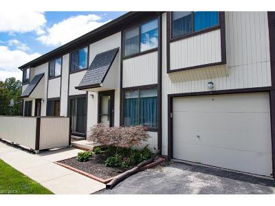 Willoughby Condo/Townhouse For Sale: 35228 North Turtle Trl #41-A