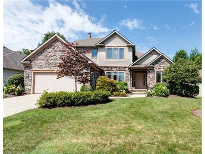 Solon Single Family Home For Sale: 6662 Brandamore Ct