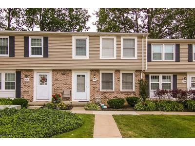 Mentor Condo/Townhouse For Sale: 7398 South Chestnut Commons Dr