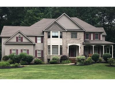 Geauga County Single Family Home For Sale: 11725 Colchester Ln