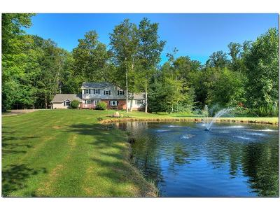 Geauga County Single Family Home For Sale: 17060 Curry