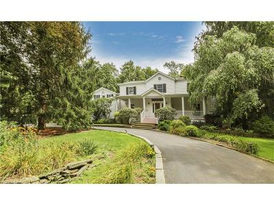 Geauga County Single Family Home For Sale: 808 Coy Ln