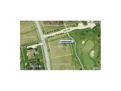 Huron County Residential Lots & Land For Sale: 30 Eagle Creek Dr #Lot 40