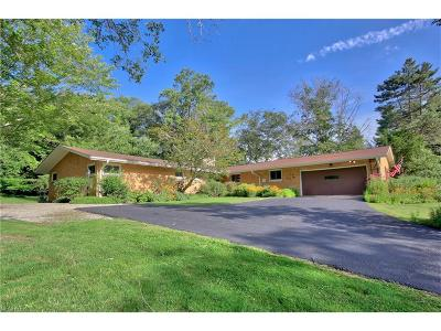 Solon OH Single Family Home For Sale: $364,900