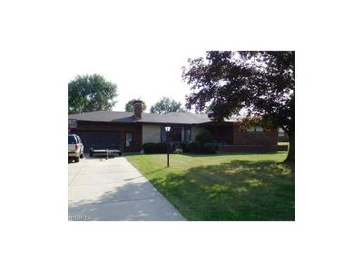 Youngstown Single Family Home For Sale: 2590 Barrington Ct