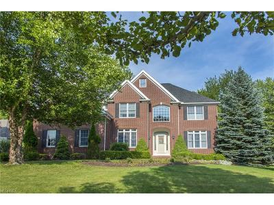 Broadview Heights Single Family Home For Sale: 3519 Hawthorne Trl