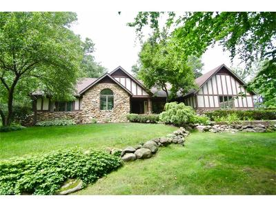 Summit County Single Family Home For Sale: 3985 Brush Rd
