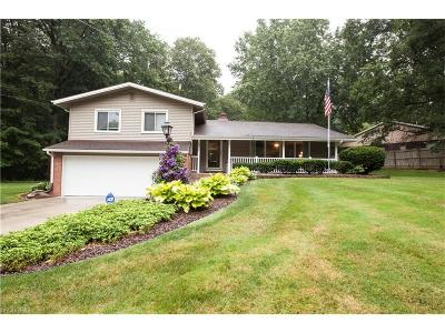 Youngstown Single Family Home For Sale: 531 Northlawn Dr