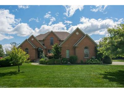 Canfield Single Family Home For Sale: 8036 Camden Way