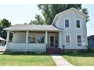 Geneva Single Family Home For Sale: 166 Vine St