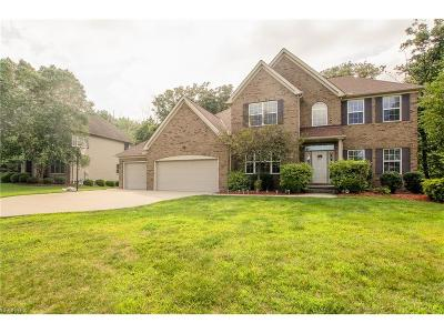 Independence Single Family Home For Sale: 6844 Great Oaks