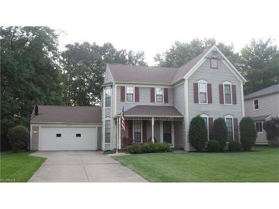 Solon OH Single Family Home For Sale: $249,000