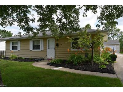 Chardon Single Family Home For Sale: 496 Crickett Rd