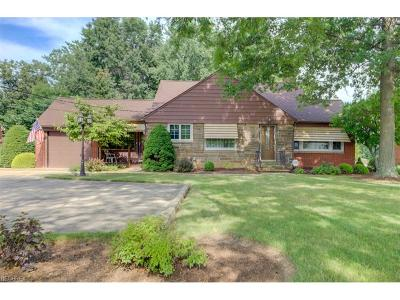 Independence Single Family Home For Sale: 7321 Brecksville Rd