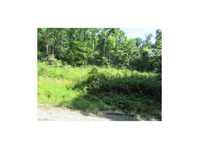 Muskingum County Residential Lots & Land For Sale: 13400 Blue Rock Church Rd