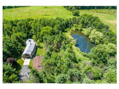 Hinckley Single Family Home For Sale: 1986 Parker Rd